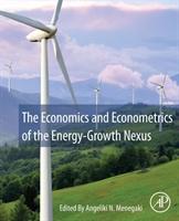 Economics And Econometrics Of The Energy-growth Nexus