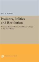 Peasants, Politics And Revolution