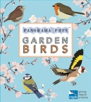 Garden Birds: Panorama Pops
