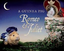 Guinea Pig Romeo & Juliet