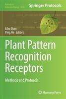 Plant Pattern Recognition Receptors