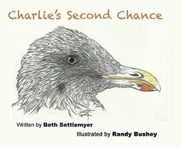 Charlie's Second Chance