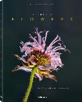 Tribute To Flowers: Plants Under Pressure
