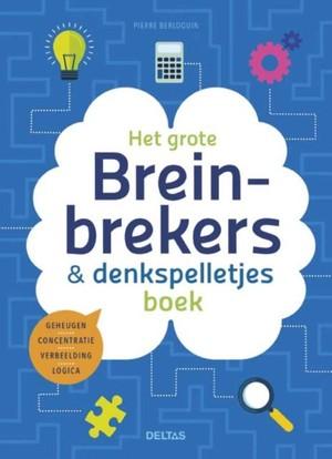 Het grote breinbrekers-en denkspelletjesboek