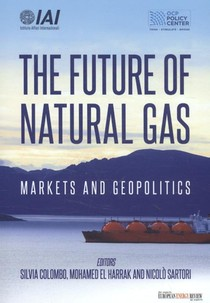 The future of natural gas