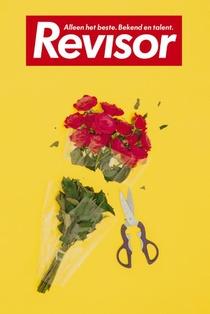 Revisor 19