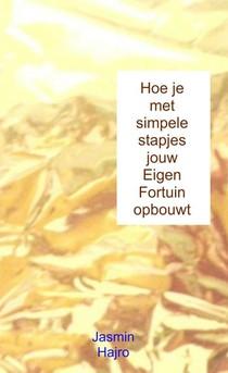 Hoe je met simpele stapjes jouw Eigen Fortuin opbouwt